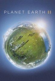 Planet Earth II – Magnetlank