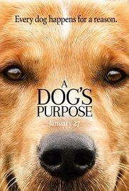 A Dog's Purpose – Magnetlank