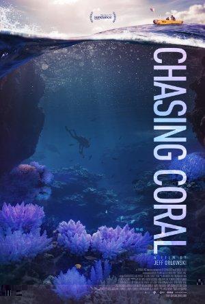 Chasing Coral – Magnetlank