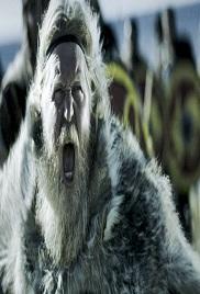 Vikingarnas Riken