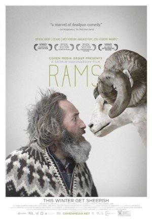 Rams – Magnetlank