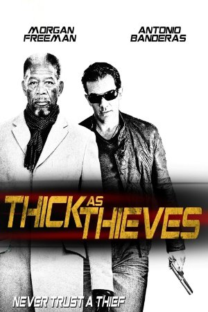 Thick as Thieves – Magnetlank